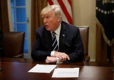 Após críticas, Trump diz que aceita conclusão da Inteligência americana sobre ingerência russa