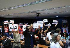 Votação do Escola Sem Partido é adiada; relator chama petista de mentirosa