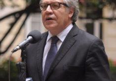 OEA reconhece Guaidó como presidente encarregado da Venezuela