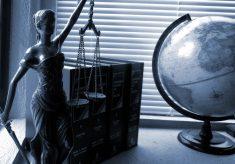 Nova lei exige notificação de indícios de violência contra a mulher